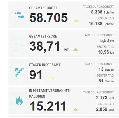 Fitbit Statistik KW 30