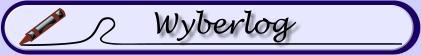 www.wyberlog.de