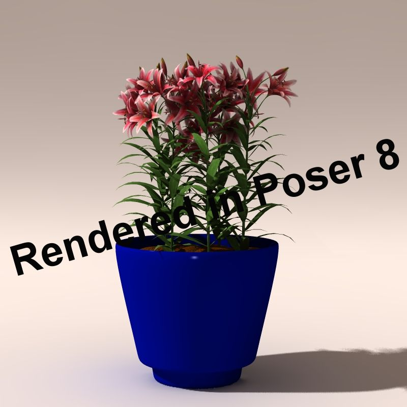Blumentopf1, Render in Poser 8